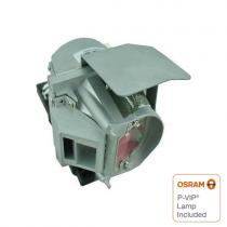 1020991 OEM Projector Lamp